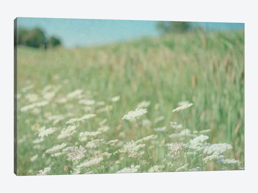 Yarrow Field by Elizabeth Urquhart 1-piece Canvas Artwork