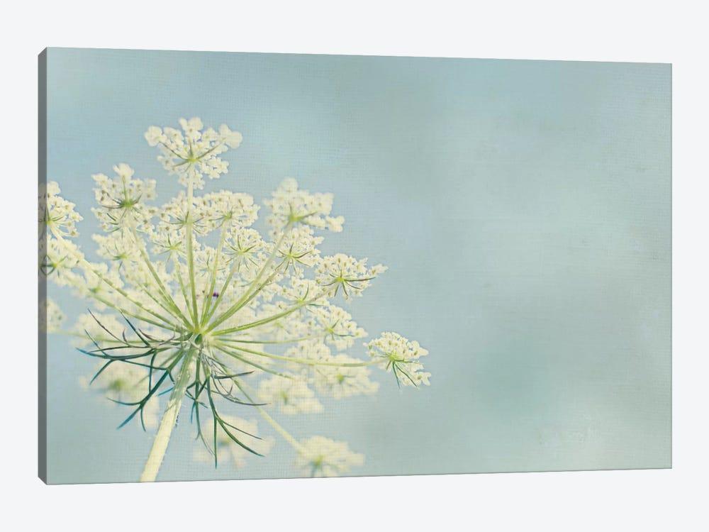 Flower on Blue I by Elizabeth Urquhart 1-piece Canvas Art Print