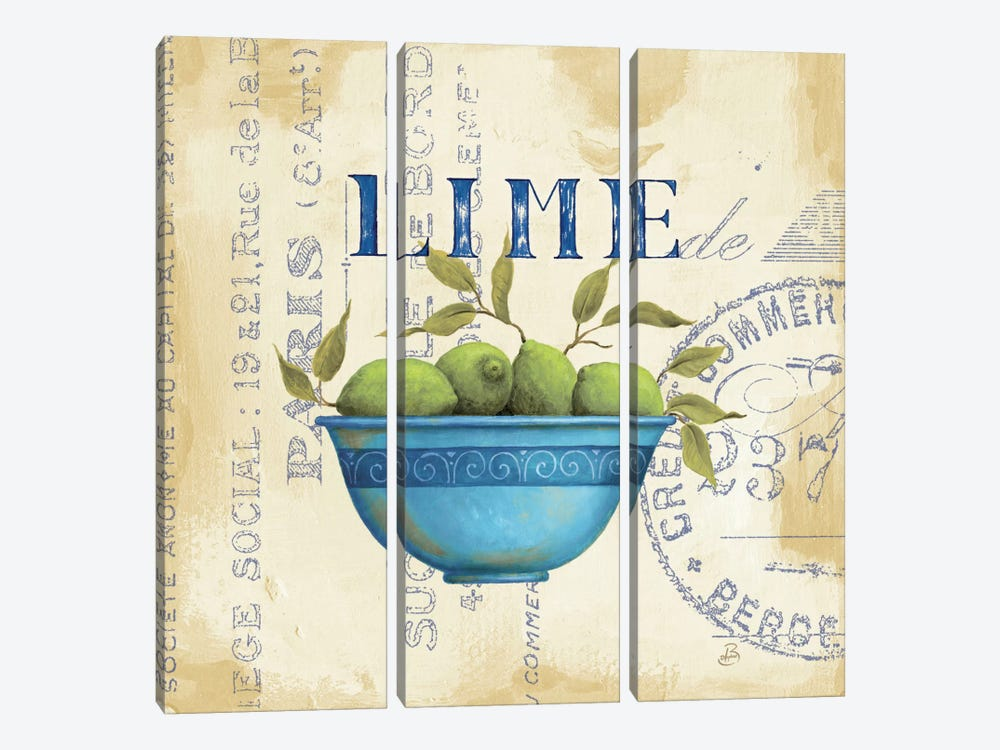 Zest of Limes by Daphne Brissonnet 3-piece Canvas Artwork