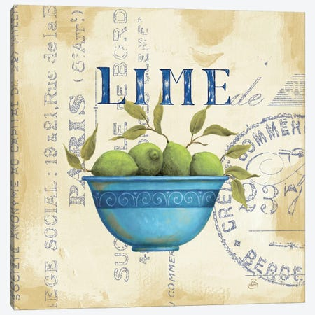 Zest of Limes Canvas Print #WAC319} by Daphne Brissonnet Canvas Art