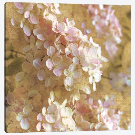 Gilded Hydrangea I Canvas Print #WAC3219} by All That Glitters Canvas Print