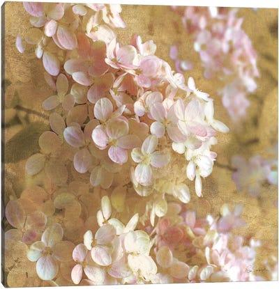 Gilded Hydrangea I Canvas Art Print