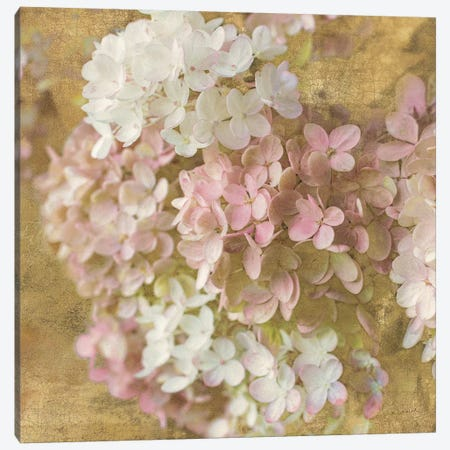 Gilded Hydrangea II Canvas Print #WAC3220} by All That Glitters Canvas Art