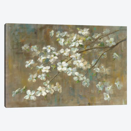 Dogwood in Spring Canvas Print #WAC3231} by All That Glitters Art Print