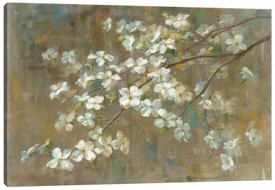 Dogwood in Spring Canvas Art Print