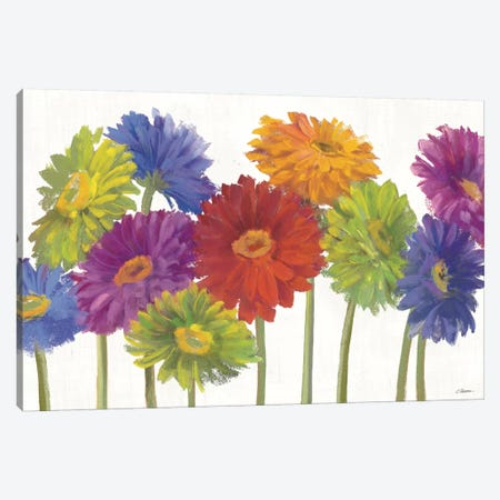 Colorful Gerbera Daisies Canvas Print #WAC3246} by Carol Rowan Art Print
