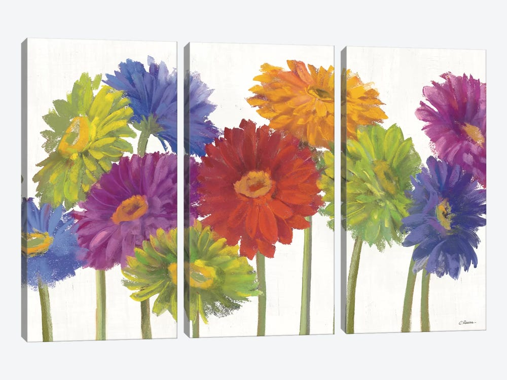 Colorful Gerbera Daisies 3-piece Canvas Print