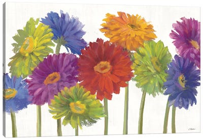 Colorful Gerbera Daisies Canvas Art Print