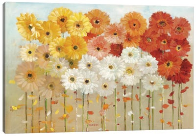 Daisies Spring Canvas Art Print