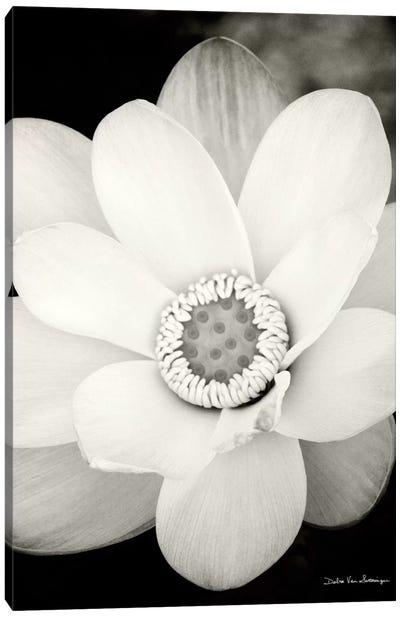 Lotus Flower III Canvas Print #WAC3268