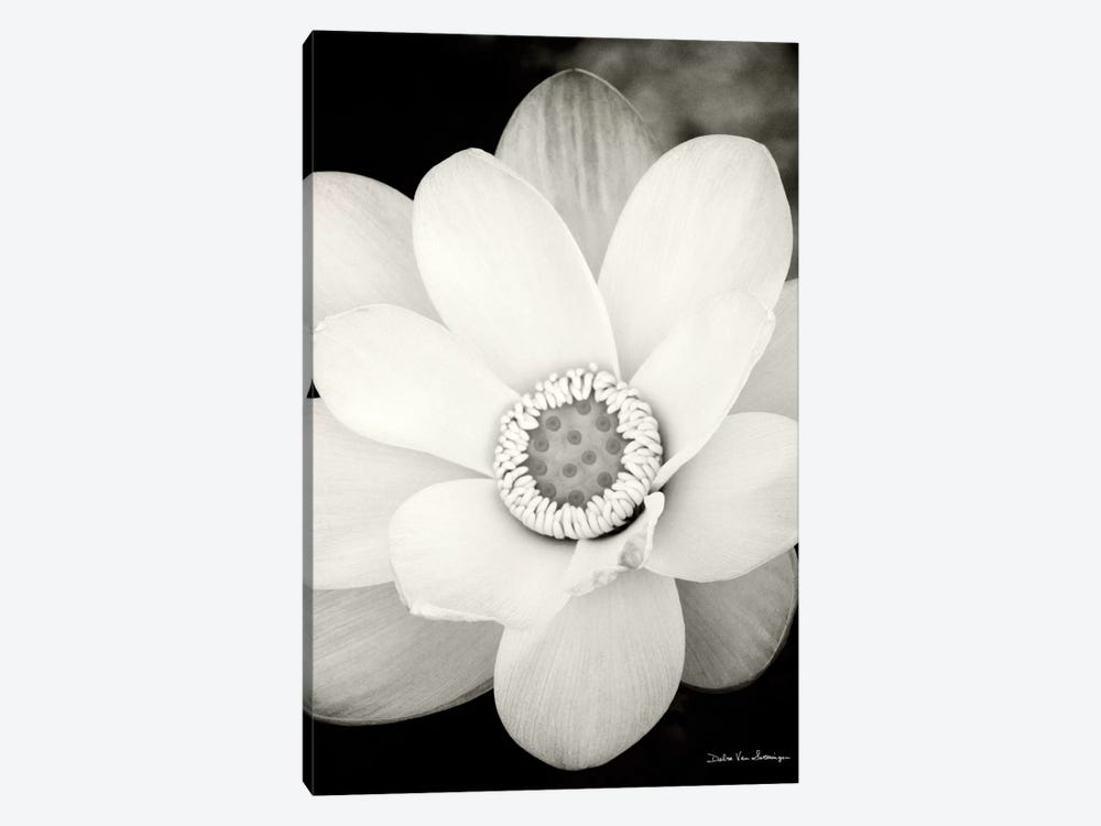 Lotus Flower III 1-piece Art Print