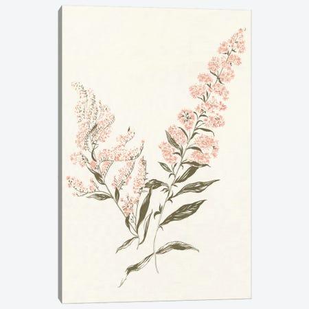 Flowers on White I Canvas Print #WAC3296} by Wild Apple Portfolio Canvas Wall Art