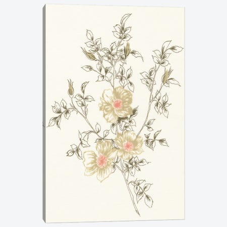 Flowers on White II Canvas Print #WAC3297} by Wild Apple Portfolio Canvas Wall Art