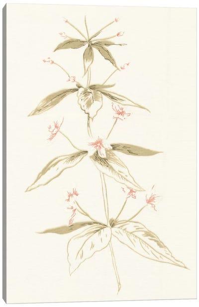 Flowers on White III Canvas Print #WAC3298