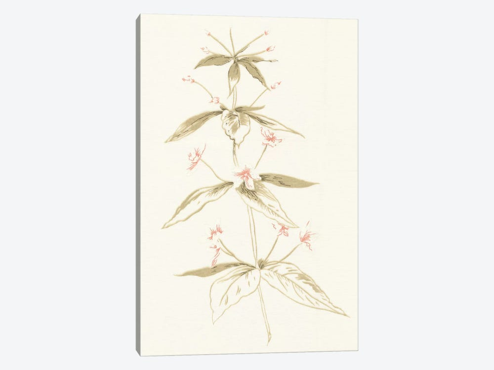 Flowers on White III by Wild Apple Portfolio 1-piece Canvas Wall Art