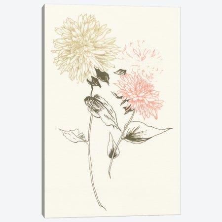 Flowers on White IV Canvas Print #WAC3299} by Wild Apple Portfolio Canvas Art Print