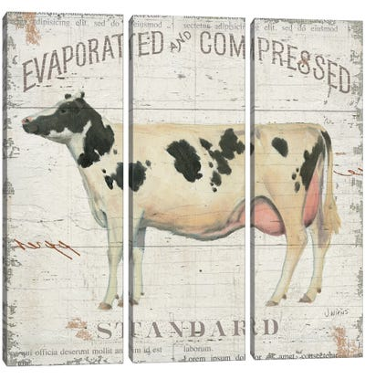 On the Farm II Canvas Art Print