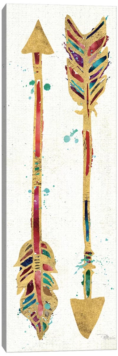 Beautiful Arrows I Canvas Art Print