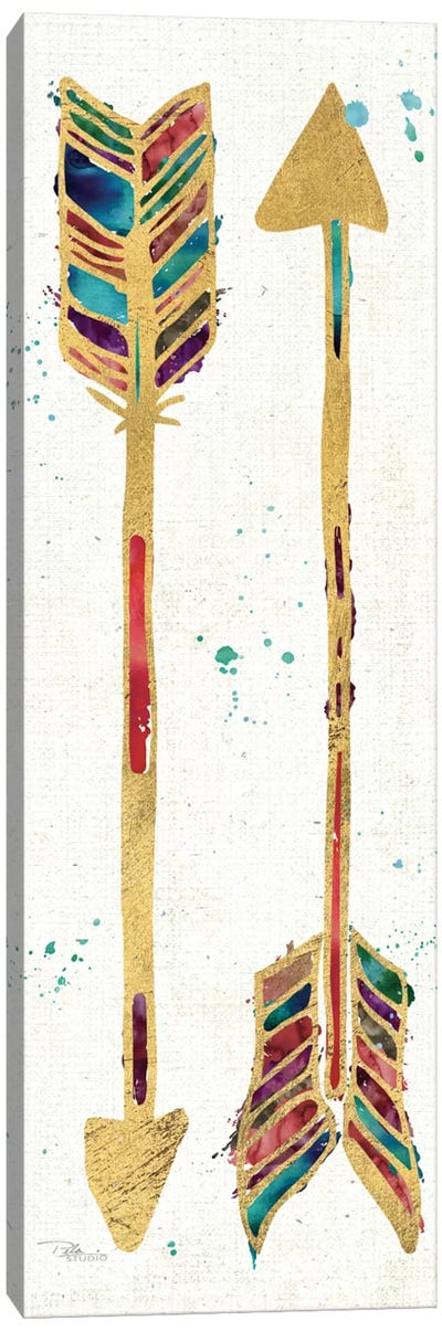 Beautiful Arrows II Canvas Art Print