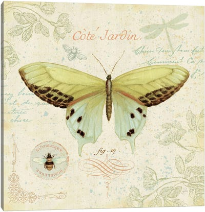 Cote Jardin II  Canvas Art Print
