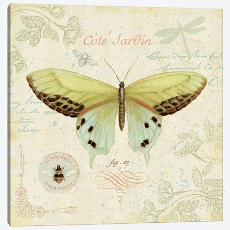 Cote Jardin II  Canvas Print #WAC337} by Daphne Brissonnet Art Print