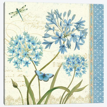 Blue Melody IV  Canvas Print #WAC352} by Daphne Brissonnet Canvas Artwork