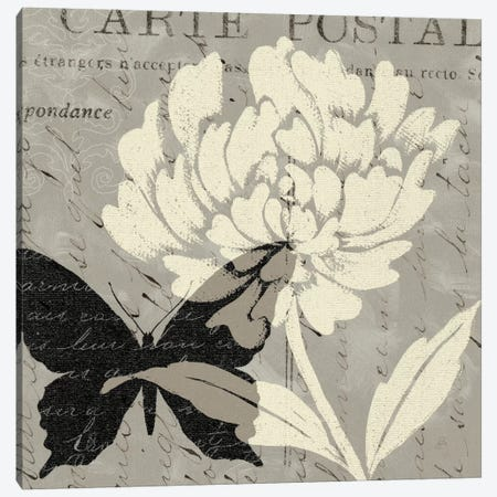 Natural Prints I Canvas Print #WAC355} by Daphne Brissonnet Canvas Art Print