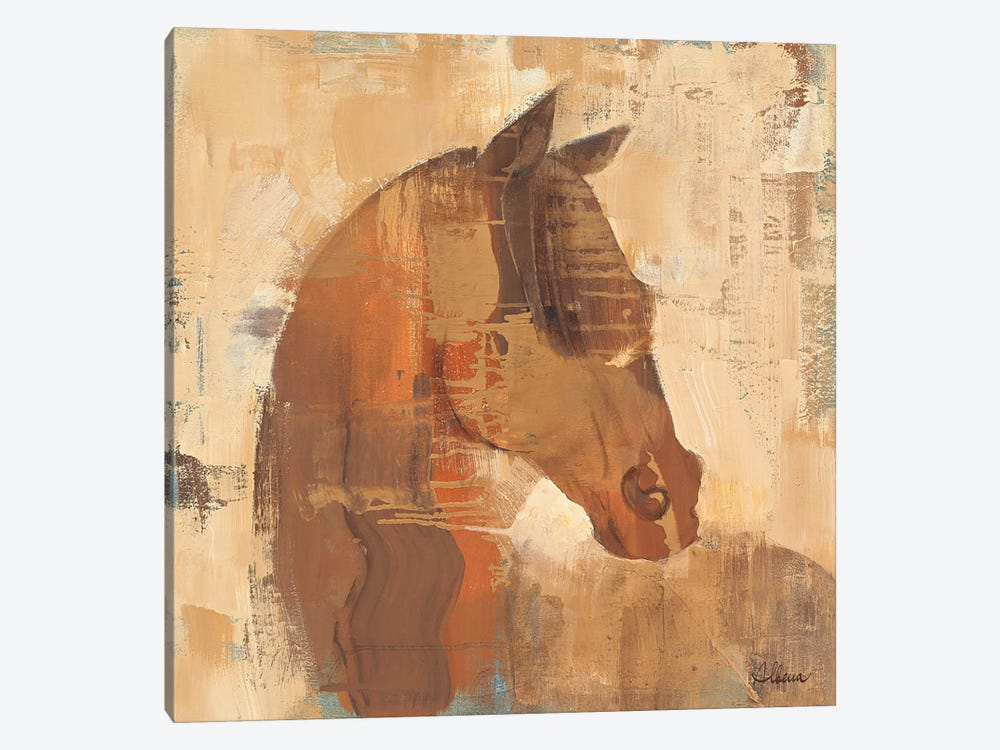 Spirit 1-piece Canvas Wall Art