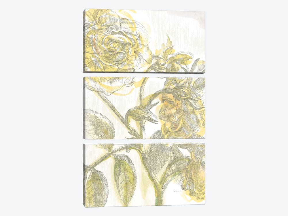 Belle Fleur Jaune I by Sue Schlabach 3-piece Canvas Print