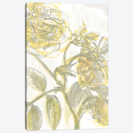 Belle Fleur Jaune I Canvas Print #WAC3702} by Sue Schlabach Canvas Print