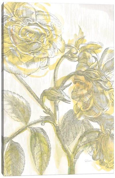 Belle Fleur Jaune I Canvas Art Print