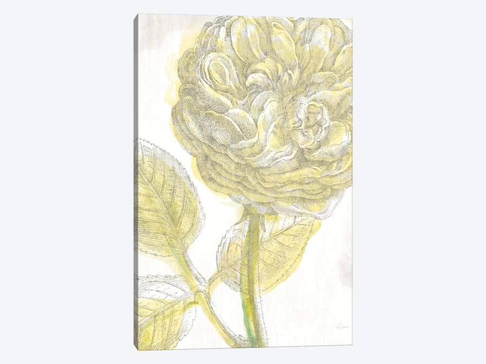 Belle Fleur Jaune III by Sue Schlabach 1-piece Canvas Art Print