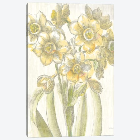 Belle Fleur Jaune IV Canvas Print #WAC3705} by Sue Schlabach Canvas Artwork