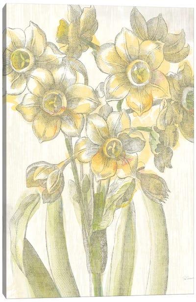 Belle Fleur Jaune IV Canvas Art Print