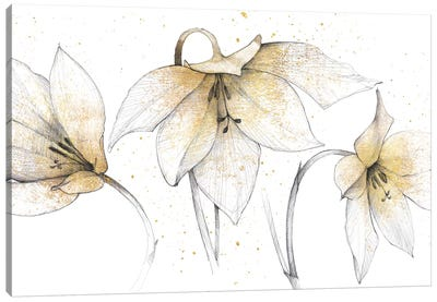 Gilded Graphite Floral Trio Canvas Art Print