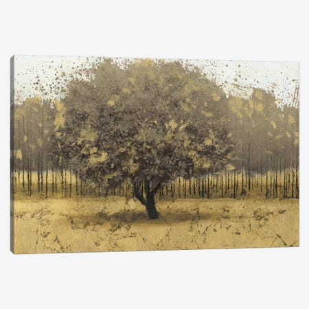 Golden Trees I 3-Piece Canvas #WAC3709} by James Wiens Canvas Art Print