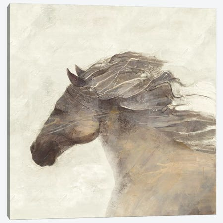 Into The Wind Ivory Canvas Print #WAC3713} by Albena Hristova Canvas Art