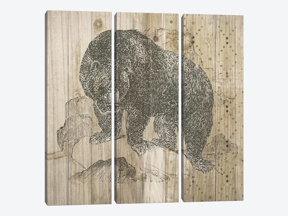 Natural History Lodge IV by Elyse DeNeige 3-piece Art Print