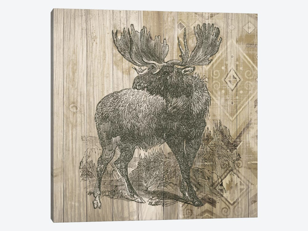 Natural History Lodge VIII by Elyse DeNeige 1-piece Canvas Print