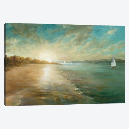 Coastal Glow Canvas Print #WAC3725} by Danhui Nai Canvas Art