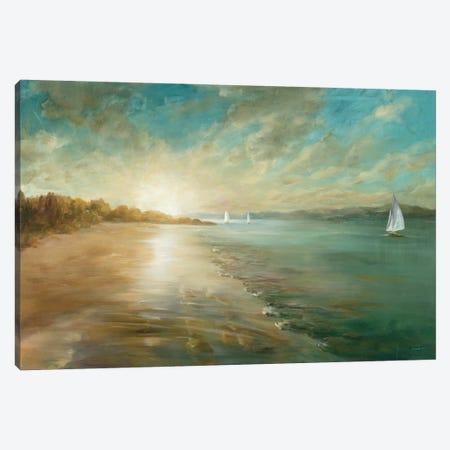 Coastal Glow Canvas Print #WAC3725} by Danhui Nai Canvas Art