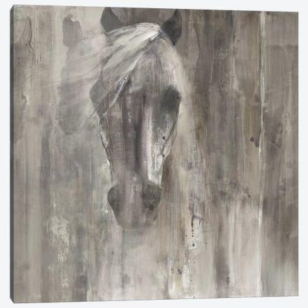 Shadow Light Canvas Print #WAC3726} by Albena Hristova Canvas Art