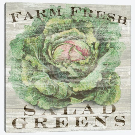 Farm Fresh Greens Canvas Print #WAC3736} by Sue Schlabach Art Print