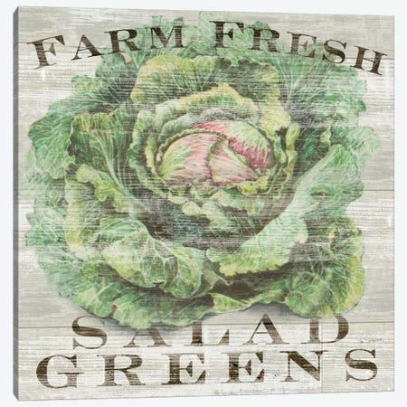 Farm Fresh Greens Canvas Print #WAC3736} by Sue Schlabach Art Print