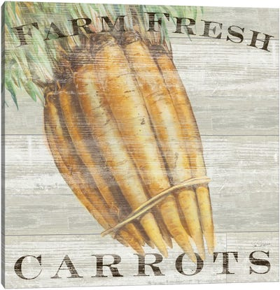 Farm Fresh Carrots Canvas Print #WAC3738