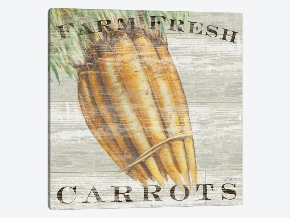 Farm Fresh Carrots by Sue Schlabach 1-piece Canvas Wall Art