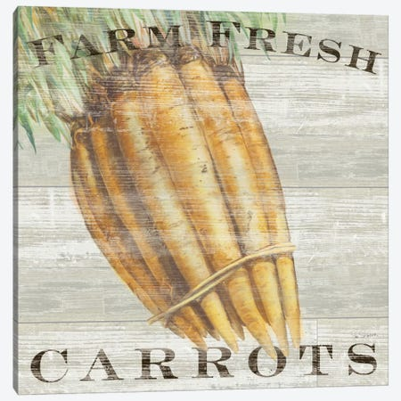 Farm Fresh Carrots Canvas Print #WAC3738} by Sue Schlabach Canvas Art