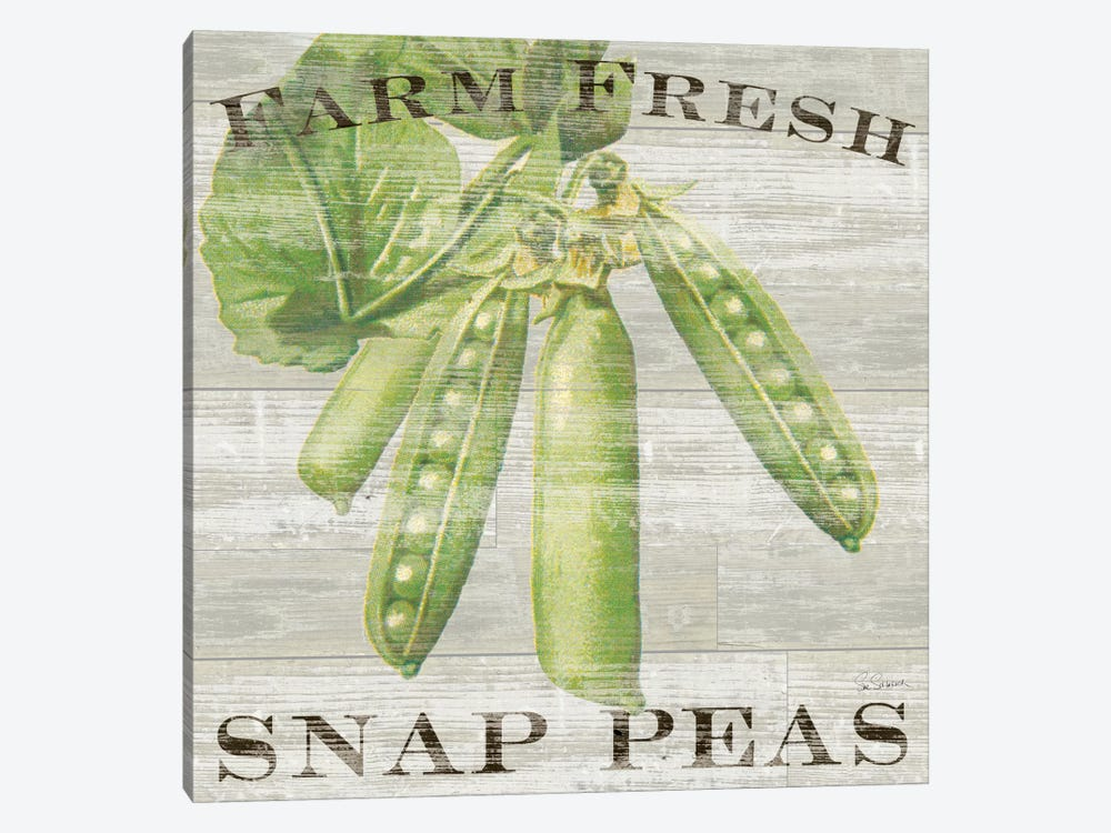 Farm Fresh Peas by Sue Schlabach 1-piece Canvas Print