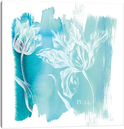Water Wash I Canvas Art Print