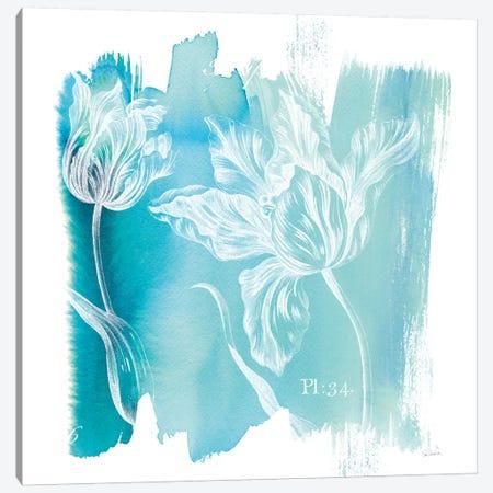 Water Wash I Canvas Print #WAC3740} by Sue Schlabach Art Print